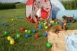 bildersalab-wurf10.8.2009111