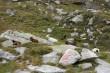 bilder österreich urlaub sep. 2011 255